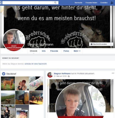 Im Profilbild dieser Siegrun Hoffmann eindeutig die Logos der faschistischen sog. Bruderschaft und Schwesternschaft Deutschland zu erkennen und damit eindeutig mindestens persönliche Bezüge von Personen aus dem AfD Vorstand OB zu neonazistischen Gruppierungen. Screenshot Facebook.